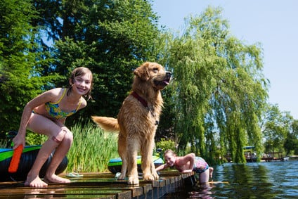 children playing with their Golden Retriever dog on a lake