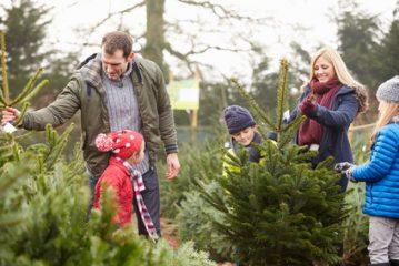 Weihnachten Patchworkfamilie